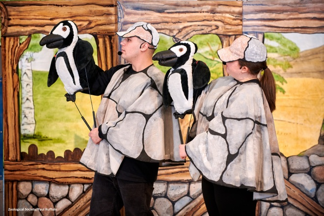 Welcome to the Zoo Penguin puppets